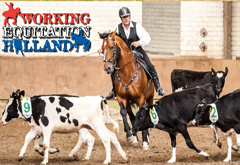 I International Competition of Working Equitation in Holland
