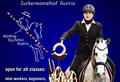 International Working Equitation Competition - Austria 2017